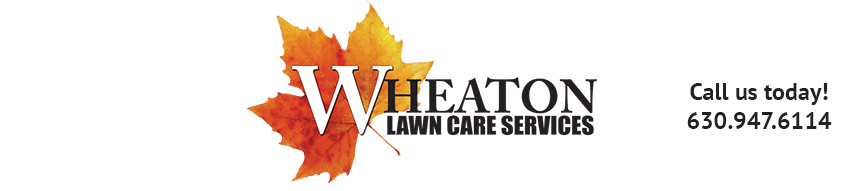 Wheaton Lawn Care Services