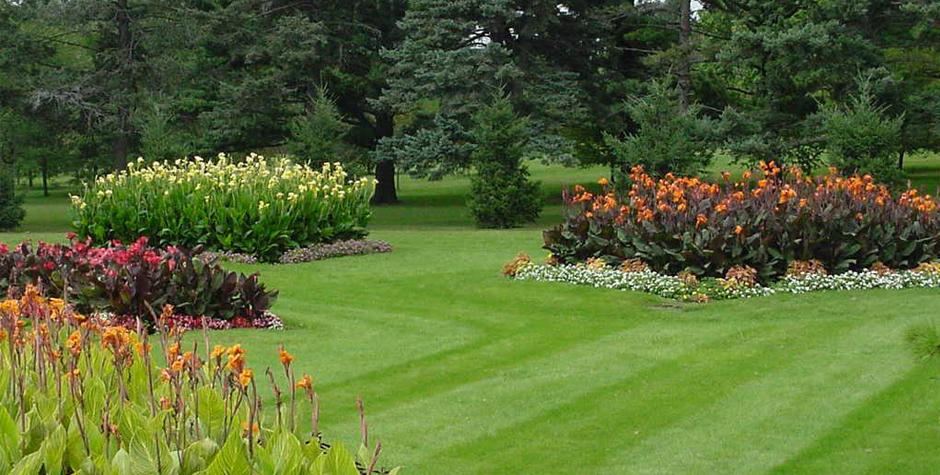 Wheaton Lawn Care - Services